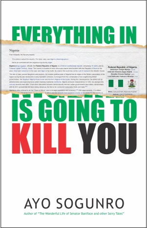 everything-in-nigeria-cover-with-border1
